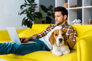 Man working from home, self Isolation and calmed by beagle dog